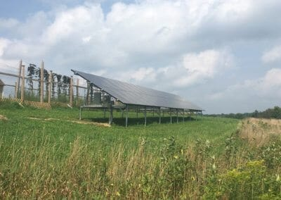 Agricultural Ground mount Solar array
