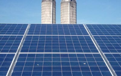 Agricultural Solar and Solar Ecology in 2021